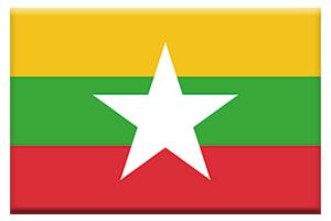 ミャンマー国旗ボタン